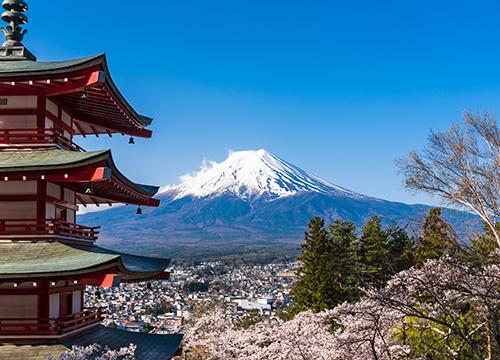 日本人は想定外?訪日中国人が好む日本のスポット